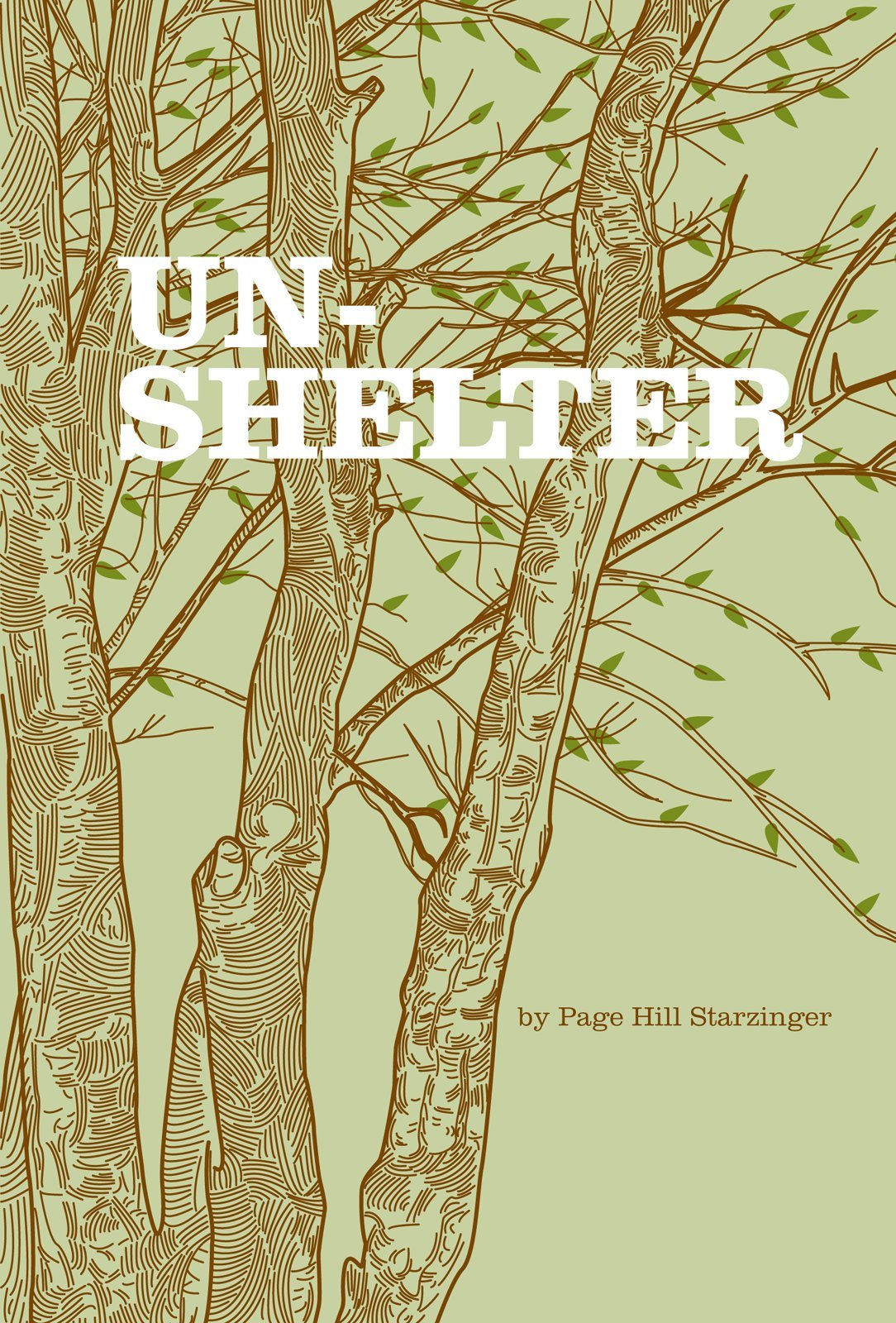 poetry chapbook template - unshelter by page hill starzinger noemi press
