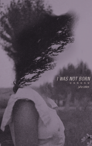 I Was Not Born by Julia Cohen
