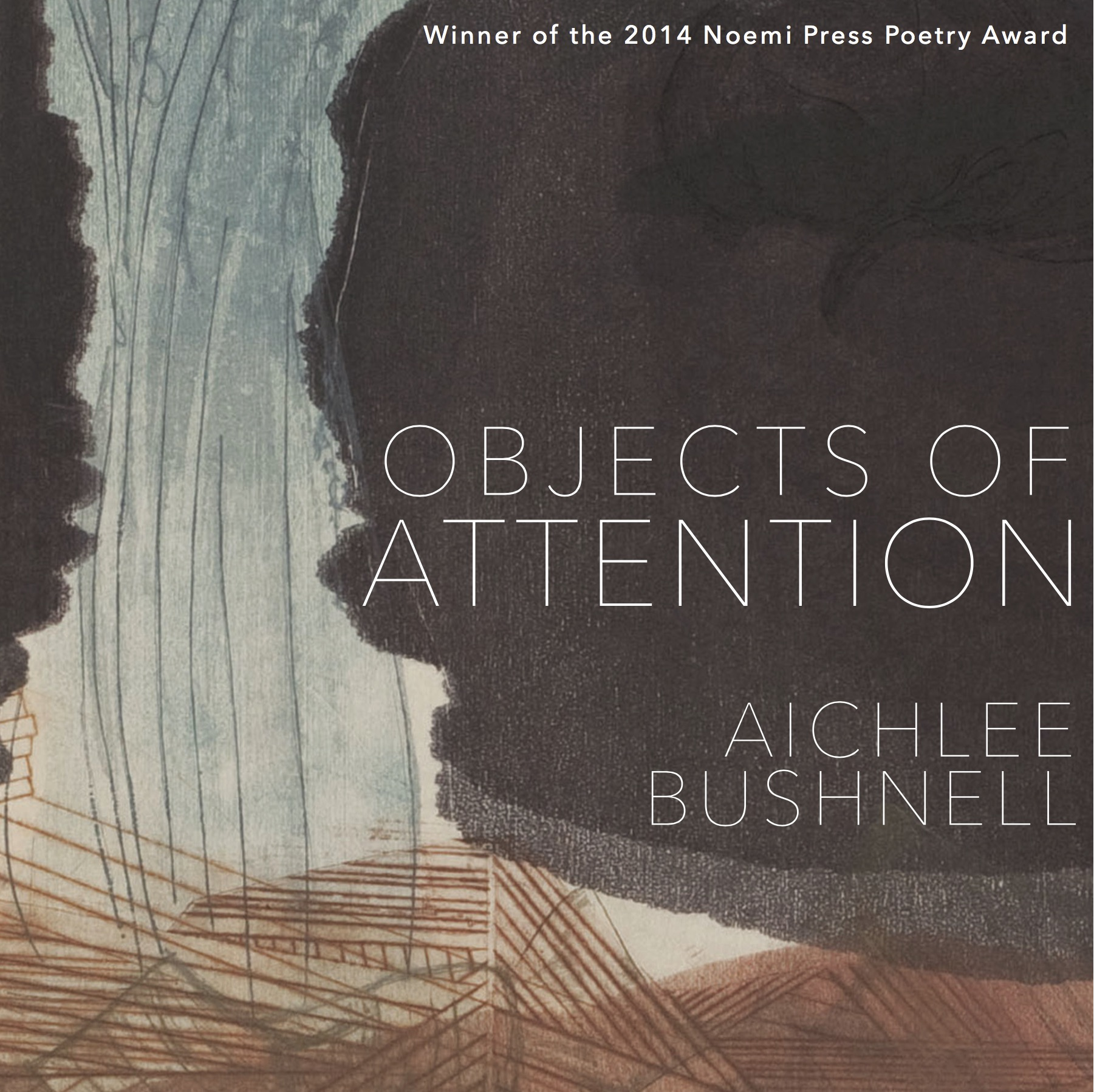 Objects of Attention by Aichlee Bushnell